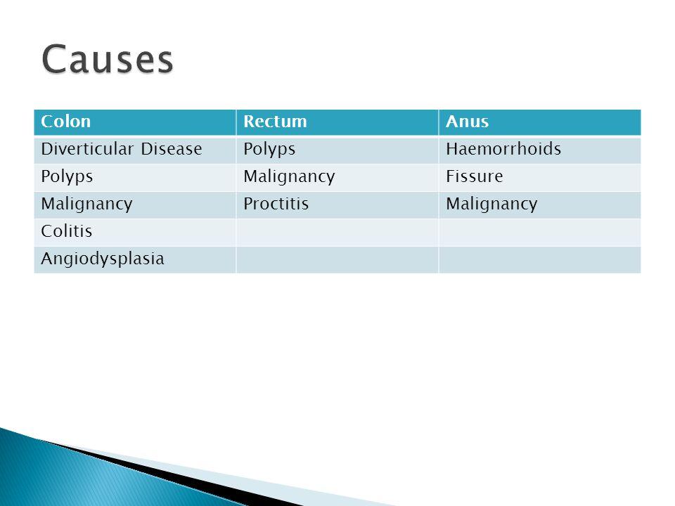 ColonRectumAnus Diverticular DiseasePolypsHaemorrhoids PolypsMalignancyFissure MalignancyProctitisMalignancy Colitis Angiodysplasia