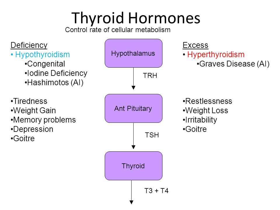Thyroid Hormones Ant Pituitary Thyroid Hypothalamus TRH TSH T3 + T4 Deficiency Hypothyroidism Congenital Iodine Deficiency Hashimotos (AI) Tiredness W