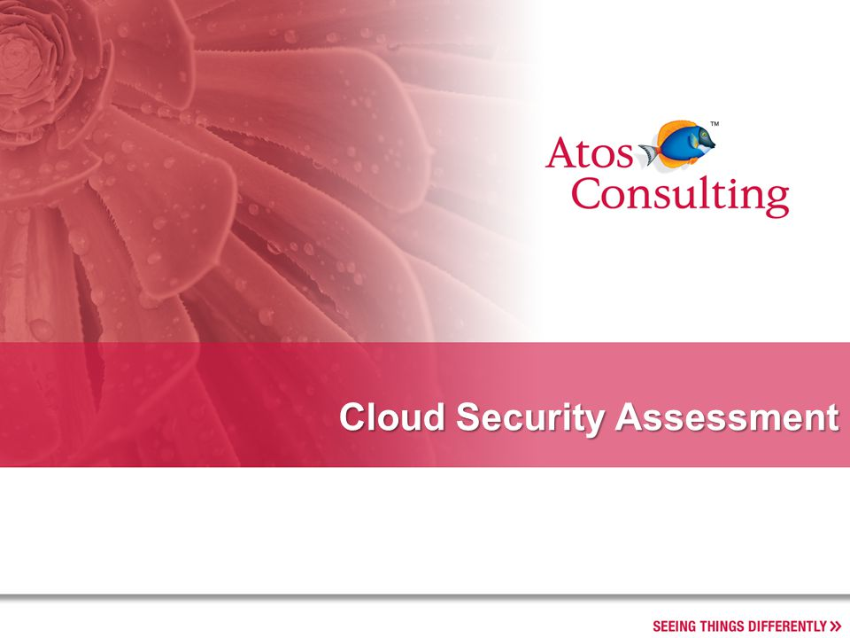Cloud Security Assessment