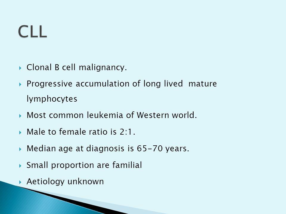  Clonal B cell malignancy.  Progressive accumulation of long lived mature lymphocytes  Most common leukemia of Western world.  Male to female rati