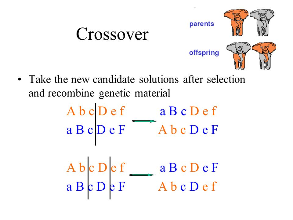 Crossover Take the new candidate solutions after selection and recombine genetic material A b c D e f a B c D e f a B c D e F A b c D e F A b c D e f a B c D e F a B c D e F A b c D e f