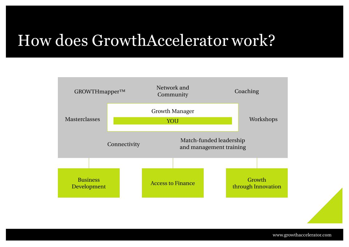 How does GrowthAccelerator work