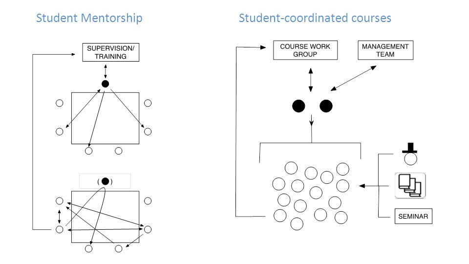 Student MentorshipStudent-coordinated courses