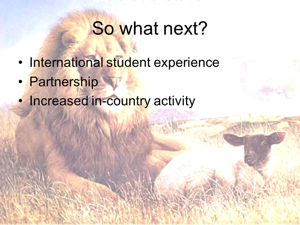 So what next? International student experience Partnership Increased in-country activity