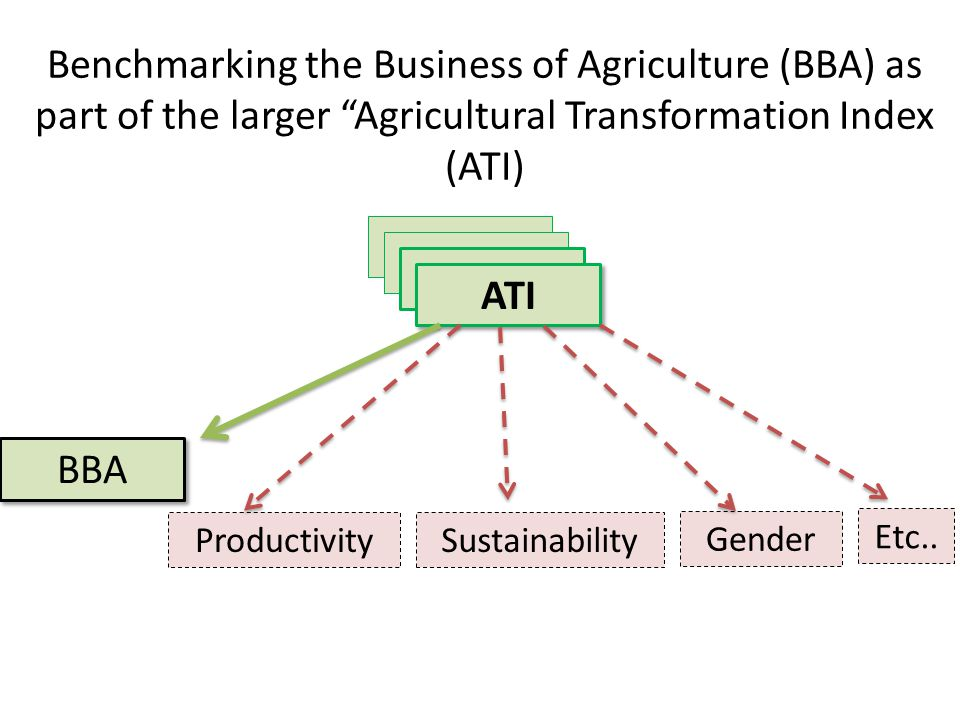 Overview of Benchmarking the Business of Agriculture (BBA) Objective : To inform & to leverage policy reforms which lead to a more modern agriculture sector, built primarily on the basis of commercially viable family farms Key elements – Focusing on 8 strategic areas: inputs, finance, transport, energy, communication, markets, land & water – Will benchmark countries on short term regulatory and implementation issues, plus longer term policy, investments & important metrics – Program will operate over a purposeful sample of 80 countries, 1 st year pilot : will fine tune the process & indicators in 10 countries, prior to large scale roll out