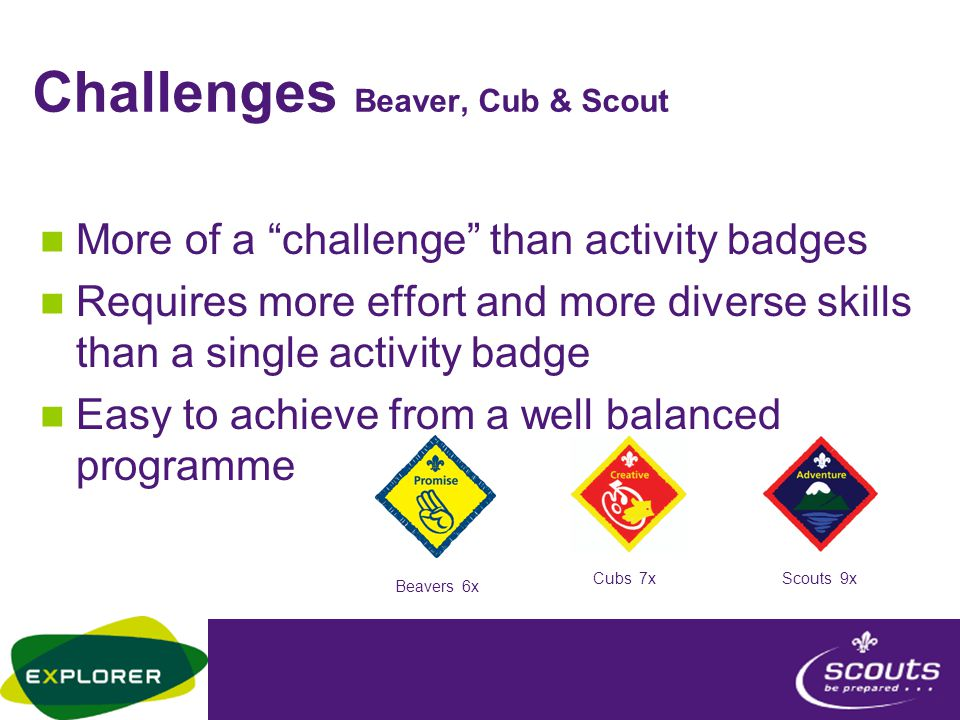 Challenges Beaver, Cub & Scout More of a challenge than activity badges Requires more effort and more diverse skills than a single activity badge Easy to achieve from a well balanced programme Beavers 6x Cubs 7xScouts 9x