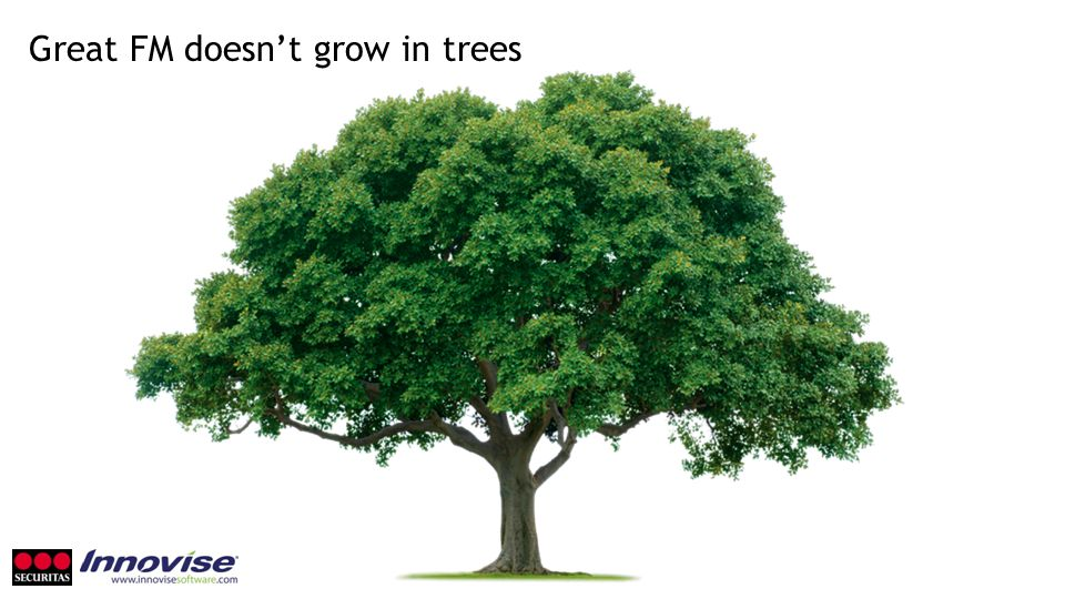 Great FM doesn't grow in trees