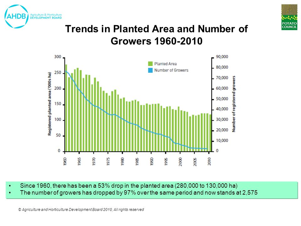 © Agriculture and Horticulture Development Board 2010, All rights reserved Trends in Planted Area and Number of Growers 1960-2010 Since 1960, there has been a 53% drop in the planted area (280,000 to 130,000 ha) The number of growers has dropped by 97% over the same period and now stands at 2,575