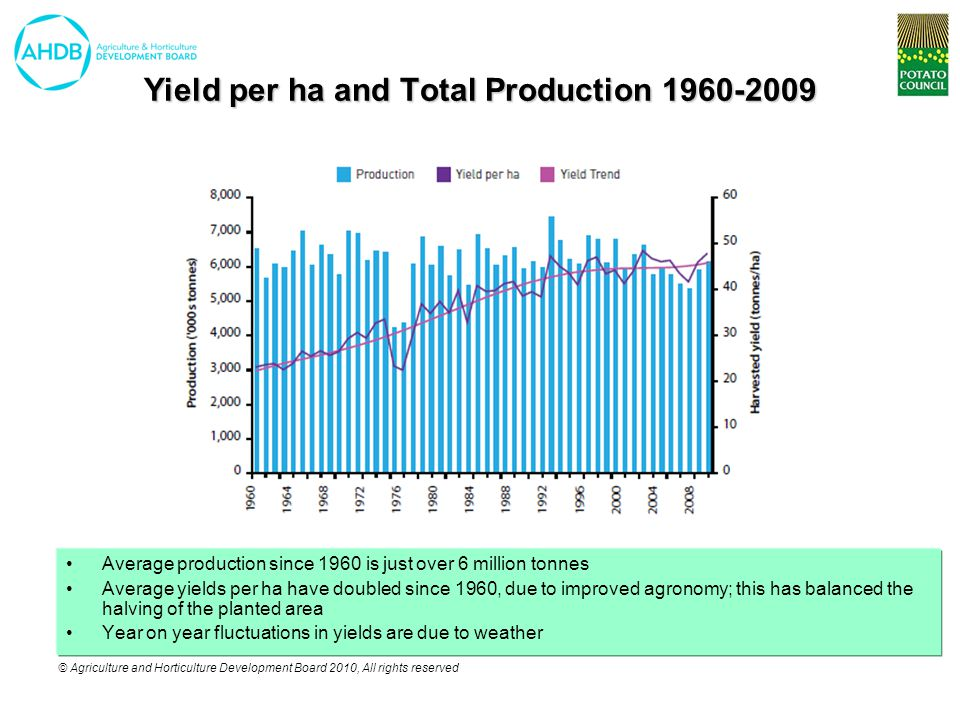 © Agriculture and Horticulture Development Board 2010, All rights reserved Yield per ha and Total Production 1960-2009 Average production since 1960 is just over 6 million tonnes Average yields per ha have doubled since 1960, due to improved agronomy; this has balanced the halving of the planted area Year on year fluctuations in yields are due to weather