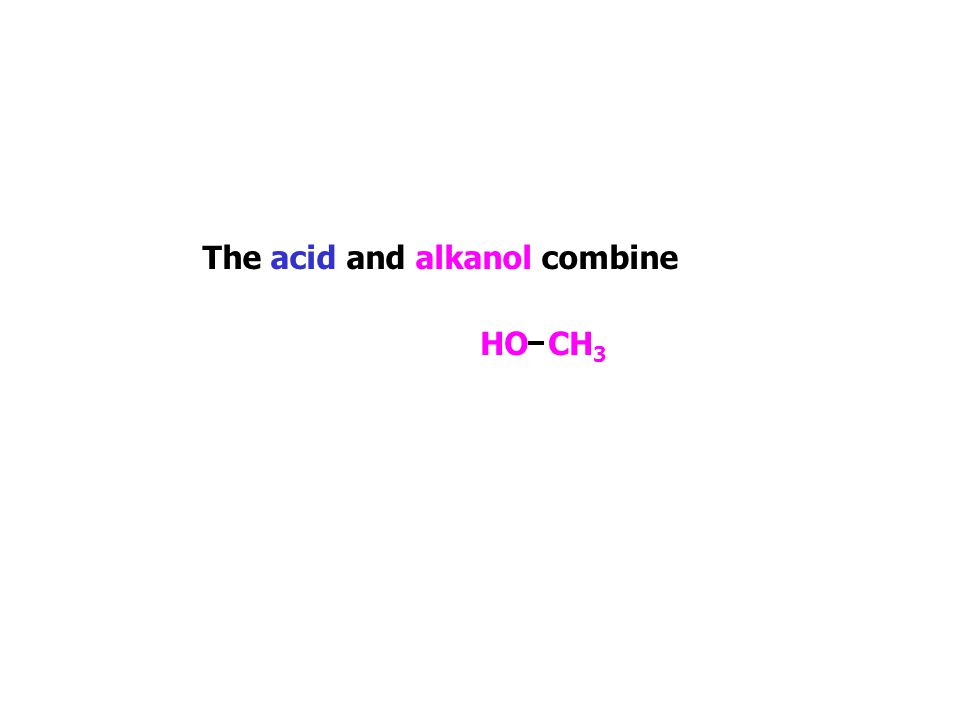 CH 3 CH 2 C OH O The acid and alkanol combine