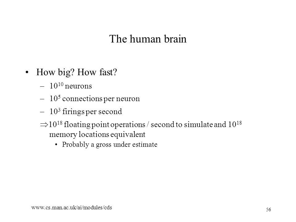 56 www.cs.man.ac.uk/ai/modules/cds The human brain How big.