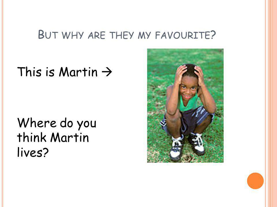 B UT WHY ARE THEY MY FAVOURITE ? This is Martin  Where do you think Martin lives?