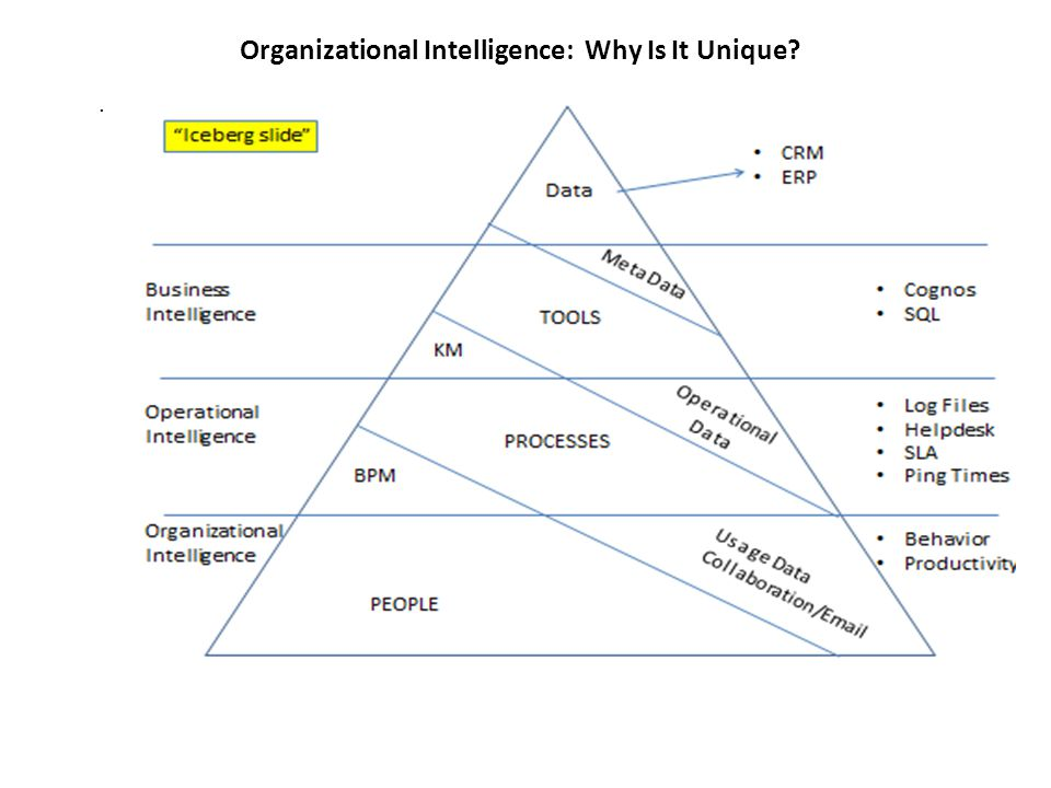 Organizational Intelligence: Why Is It Unique .