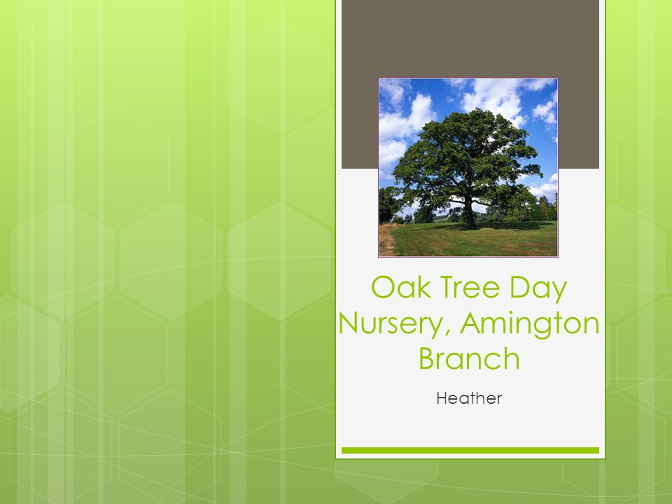 Oak Tree Day Nursery, Amington Branch Heather