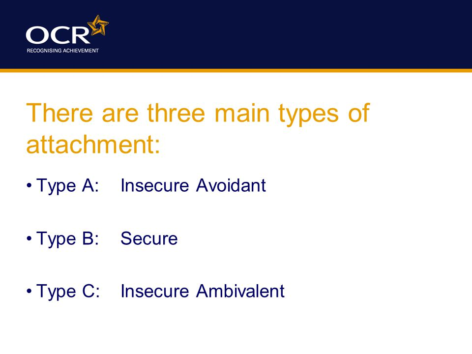 There are three main types of attachment: Type A:Insecure Avoidant Type B:Secure Type C:Insecure Ambivalent