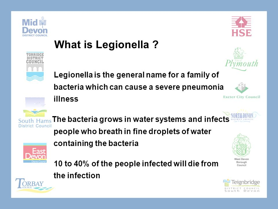 What is Legionella .