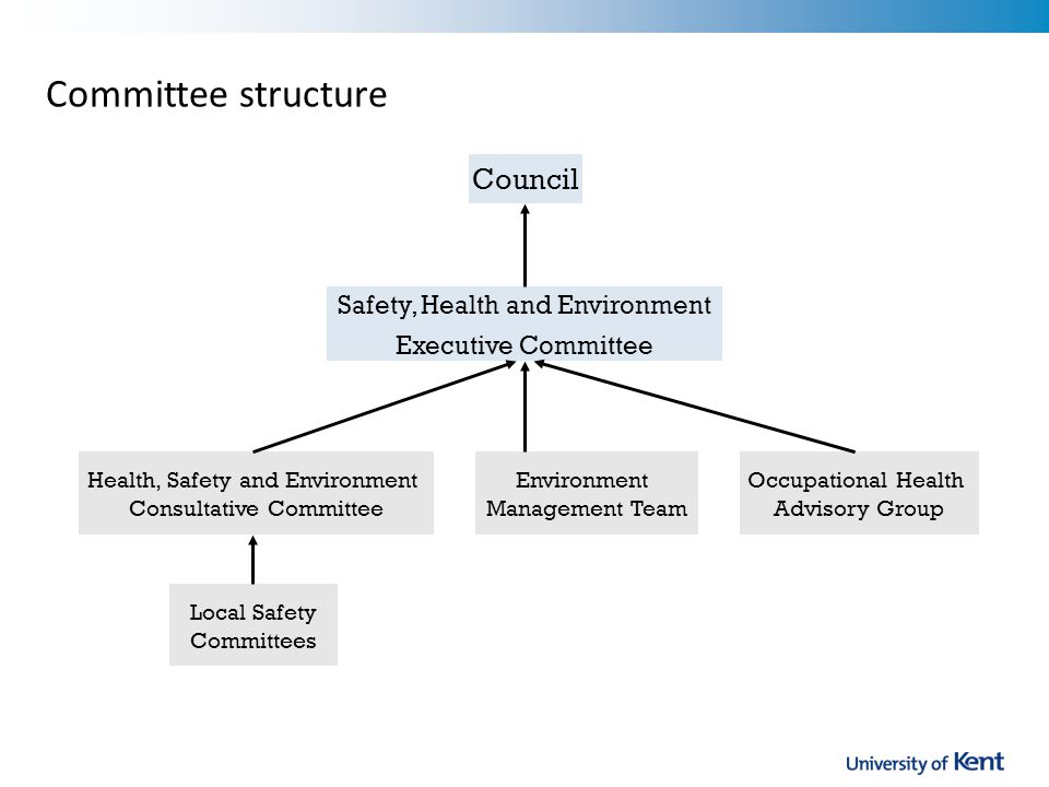 Committee structure Council Health, Safety and Environment Consultative Committee Local Safety Committees Occupational Health Advisory Group Environment Management Team Safety, Health and Environment Executive Committee