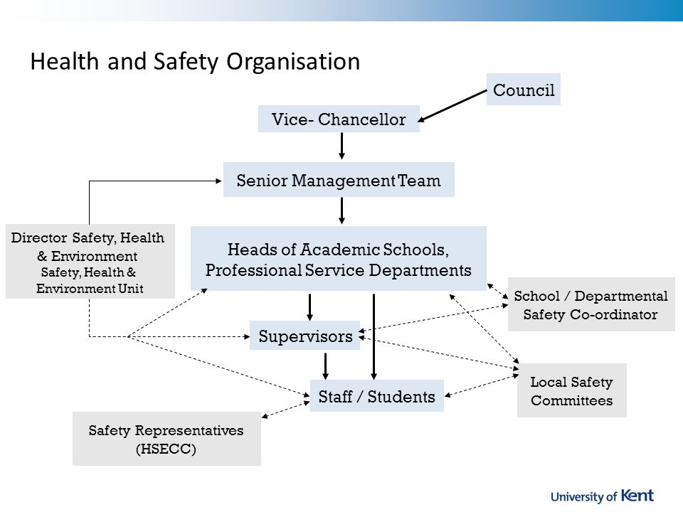 Vice- Chancellor Senior Management Team Heads of Academic Schools, Professional Service Departments Supervisors Staff / Students School / Departmental Safety Co-ordinator Safety Representatives (HSECC) Local Safety Committees Director Safety, Health & Environment Safety, Health & Environment Unit Council Health and Safety Organisation