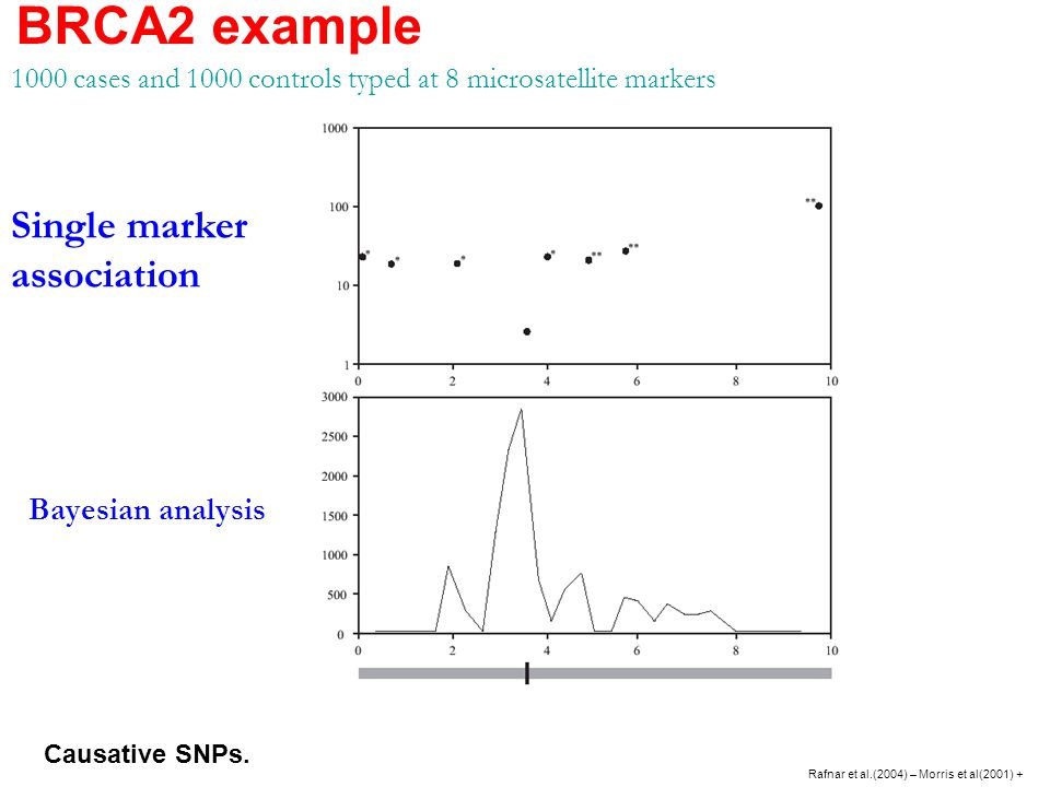 Single marker association Bayesian analysis 1000 cases and 1000 controls typed at 8 microsatellite markers BRCA2 example Rafnar et al.(2004) – Morris et al(2001) + Causative SNPs.