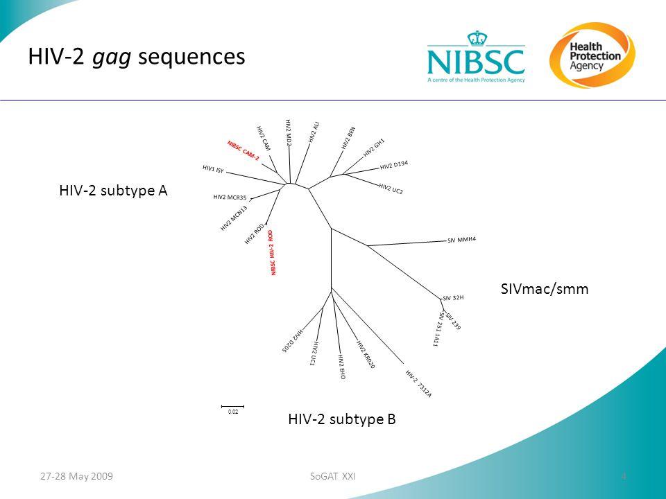 NIBSC HIV-2 ROD HIV2 ROD HIV2 MCN13 HIV2 MCR35 HIV1 ISY NIBSC CAM-2 HIV2 CAM HIV2 MD2 HIV2 ALI HIV2 BEN HIV2 GH1 HIV2 D194 HIV2 UC2 SIV MMH4 SIV 32H SIV 239 SIV 251 1A11 HIV-2 7312A HIV2 KR020 HIV2 EHO HIV2 UC1 HIV2 D205 0.02 HIV-2 gag sequences HIV-2 subtype A HIV-2 subtype B SIVmac/smm 27-28 May 20094SoGAT XXI