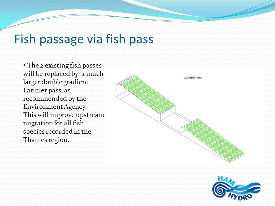 Fish passage via fish pass The 2 existing fish passes will be replaced by a much larger double gradient Larinier pass, as recommended by the Environment Agency.