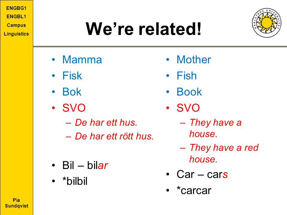 Pia Sundqvist ENGBG1 ENGBL1 Campus Linguistics We're related! Mamma Fisk Bok SVO –De har ett hus. –De har ett rött hus. Bil – bilar *bilbil Mother Fis