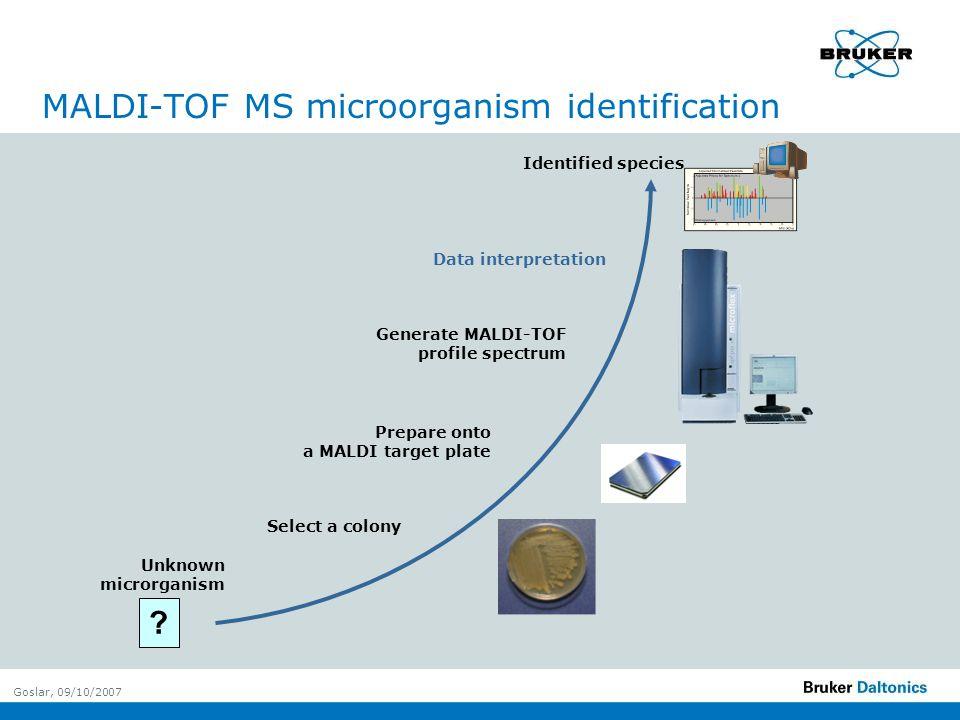 Goslar, 09/10/2007 MALDI-TOF MS microorganism identification Identified species Select a colony Prepare onto a MALDI target plate Unknown microrganism .