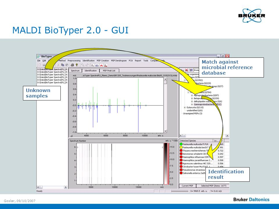 Goslar, 09/10/2007 Minimal sample preparation Powerful bioinformatic approaches Species to strain resolution, mixture detection High throughput at low costs per analysis Non-expert identification possible Dedicated databases of high quality Conclusions
