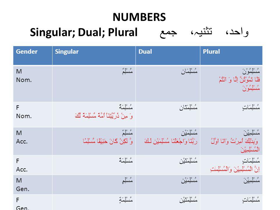 NUMBERS Singular; Dual; Plural واحد، تثنیہ، جمع GenderSingularDualPlural M Nom.