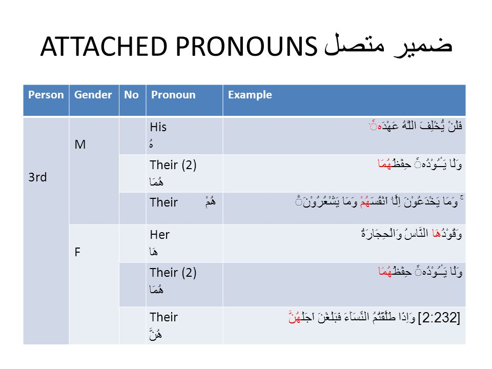 ATTACHED PRONOUNS ضمیر متصل PersonGenderNoPronounExample 3rd M His هُ فَلَنْ يُّخْلِفَ اللّٰهُ عَهْدَهۤ Their (2) ھُمَا وَلَا يَـٔـُوْدُه حِفْظُهُمَا Their ھُمْ ‌ ۚ وَمَا يَخْدَعُوْنَ اِلَّاۤ اَنْفُسَهُمْ وَمَا يَشْعُرُوْنَ ‏ F Her ھَا وَقُوْدُهَا النَّاسُ وَالْحِجَارَةُ Their (2) ھُمَا وَلَا يَـٔـُوْدُه حِفْظُهُمَا Their ھُنَّ [2:232 ] وَاِذَا طَلَّقْتُمُ النِّسَآءَ فَبَلَغْنَ اَجَلَهُنَّ