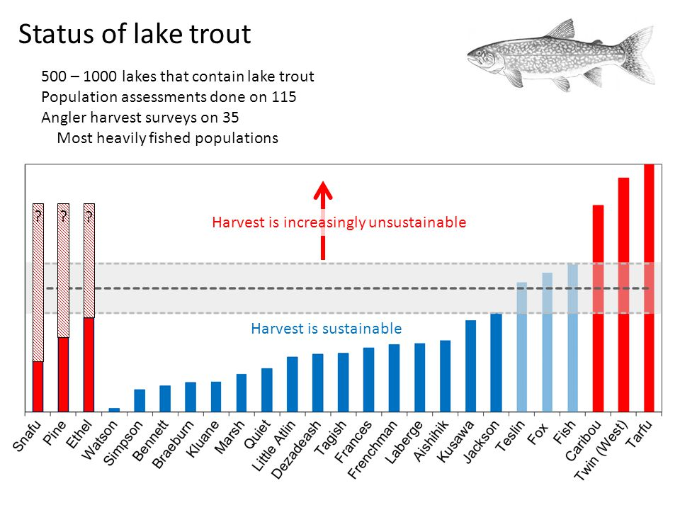 Harvest is sustainable Harvest is increasingly unsustainable ?? ? Status of lake trout 500 – 1000 lakes that contain lake trout Population assessments