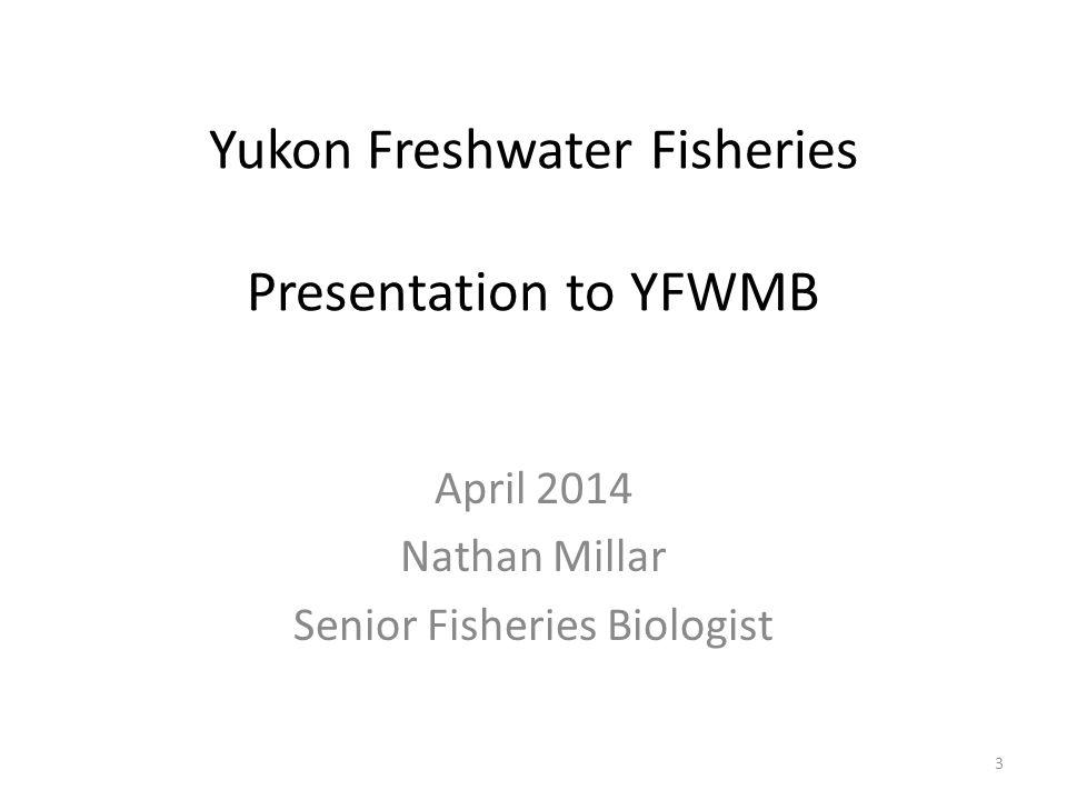 Yukon Freshwater Fisheries Presentation to YFWMB April 2014 Nathan Millar Senior Fisheries Biologist 3