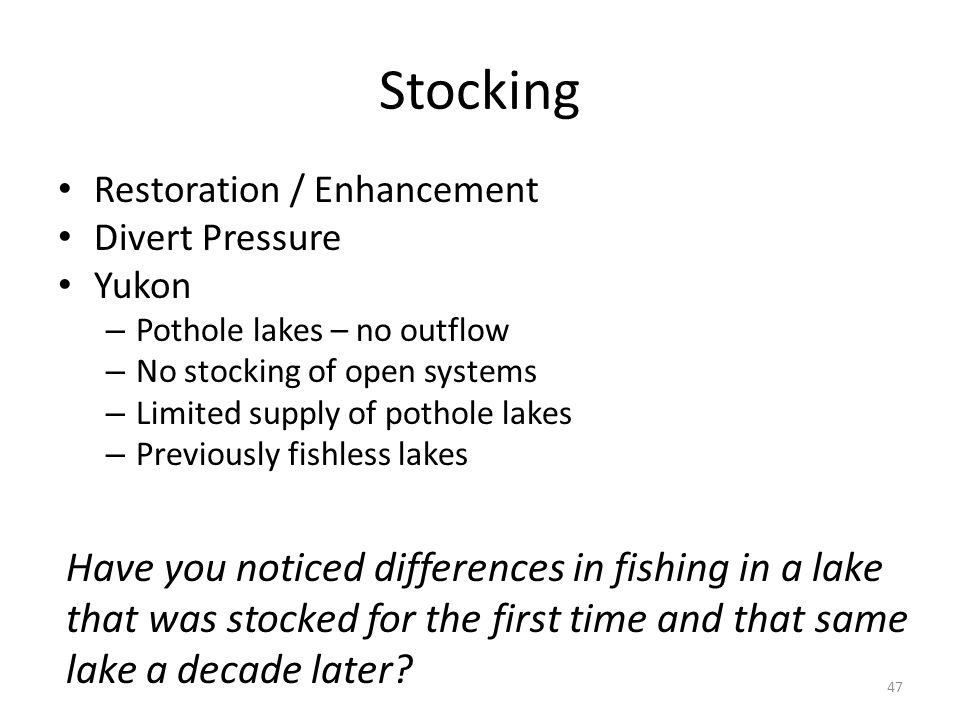 Stocking Restoration / Enhancement Divert Pressure Yukon – Pothole lakes – no outflow – No stocking of open systems – Limited supply of pothole lakes – Previously fishless lakes 47 Have you noticed differences in fishing in a lake that was stocked for the first time and that same lake a decade later
