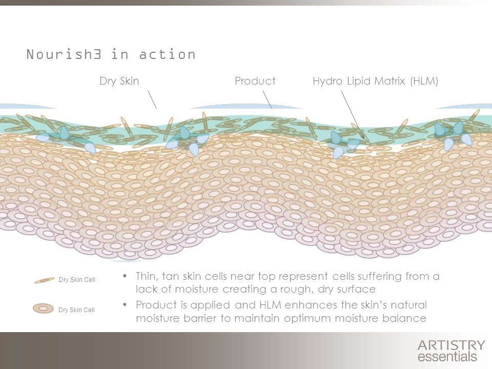 Thin, tan skin cells near top represent cells suffering from a lack of moisture creating a rough, dry surface Product is applied and HLM enhances the skin's natural moisture barrier to maintain optimum moisture balance Dry SkinProduct Nourish3 in action Hydro Lipid Matrix (HLM) Dry Skin Cell