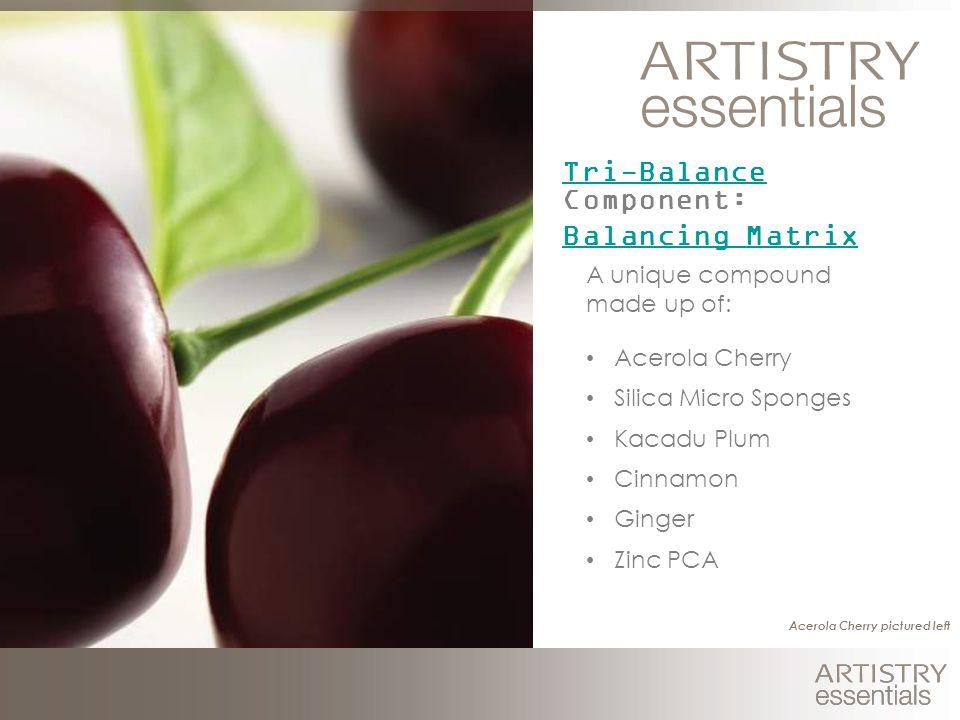 A unique compound made up of: Acerola Cherry Silica Micro Sponges Kacadu Plum Cinnamon Ginger Zinc PCA Tri-Balance Tri-Balance Component: Balancing Ma