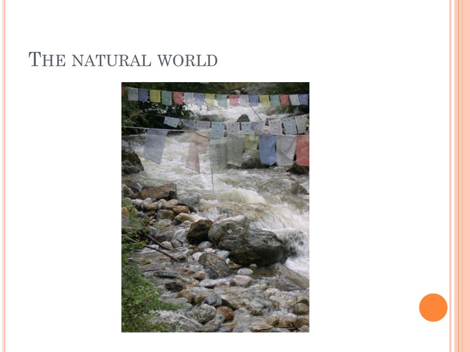 T HE NATURAL WORLD