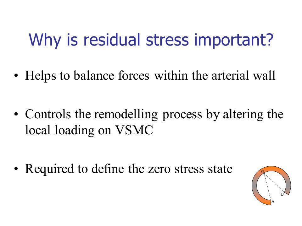 Helps to balance forces within the arterial wall Controls the remodelling process by altering the local loading on VSMC Required to define the zero stress state A O B Why is residual stress important?