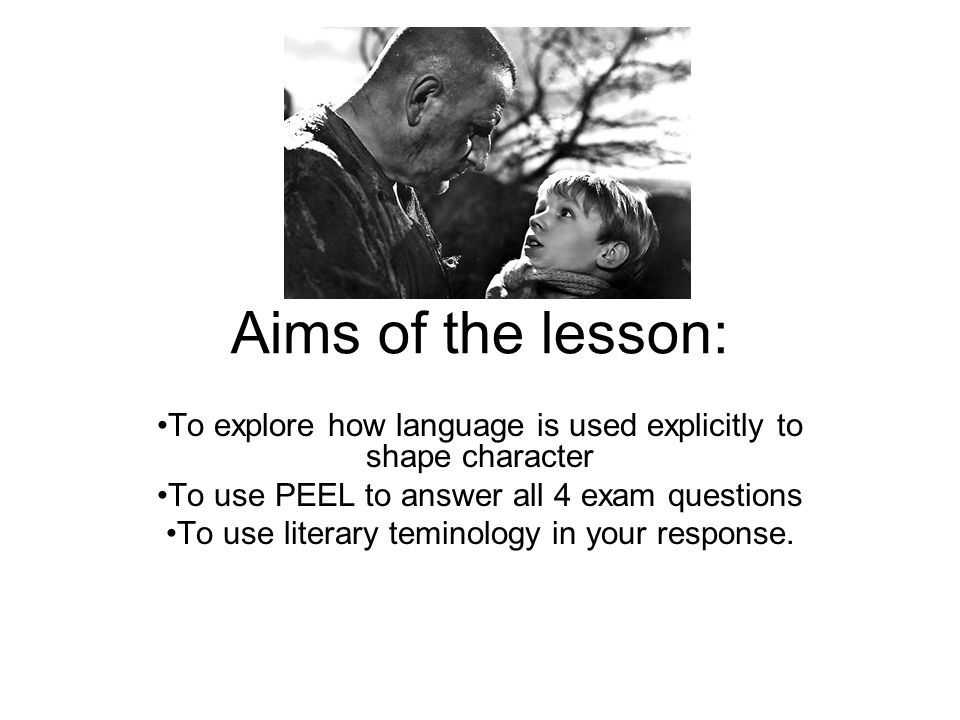 Aims of the lesson: To explore how language is used explicitly to shape character To use PEEL to answer all 4 exam questions To use literary teminology in your response.