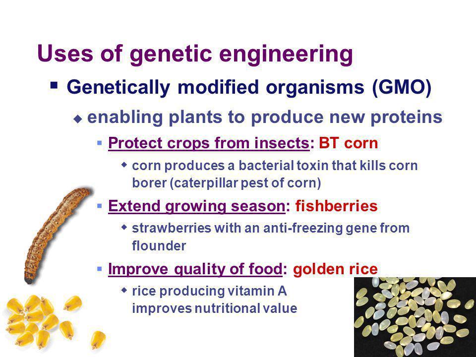 Why mix genes together? TAACGAATTCTACGAATGGTTACATCGCCGAATTCTACGATC CATTGCTTAAGATGCTTACCAATGTAGCGGCTTAAGATGCTAGC  Gene produces protein in different o