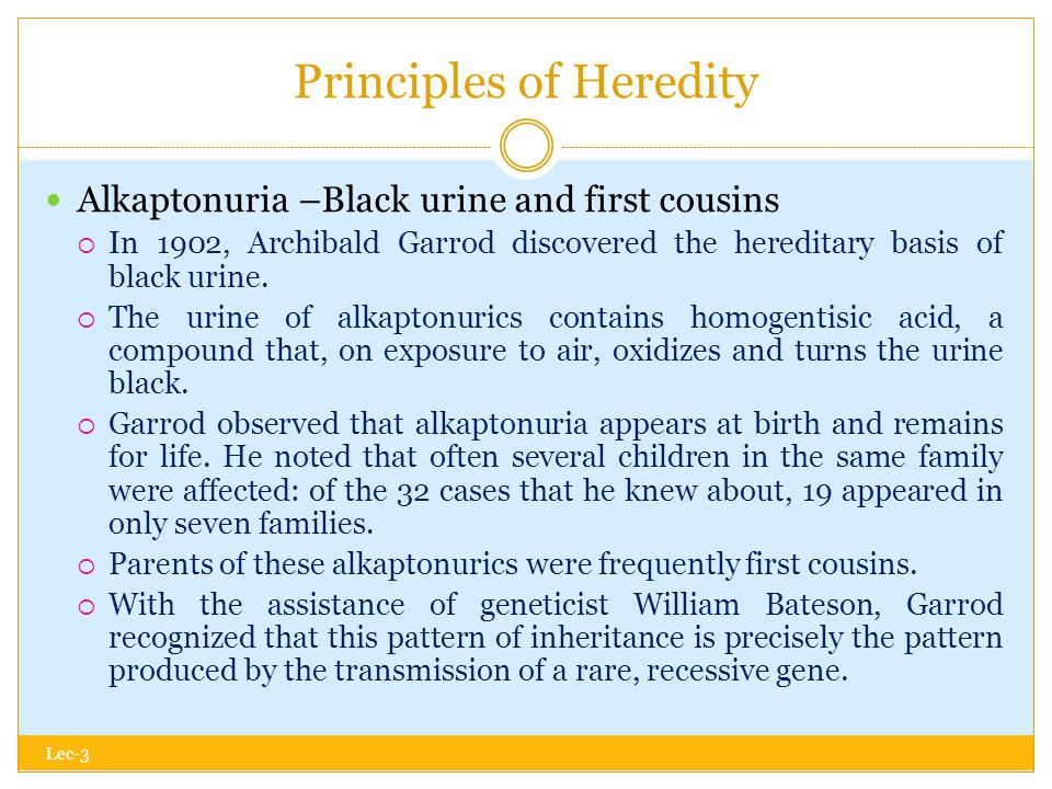 Principles of Heredity Lec-3 Alkaptonuria –Black urine and first cousins  In 1902, Archibald Garrod discovered the hereditary basis of black urine.