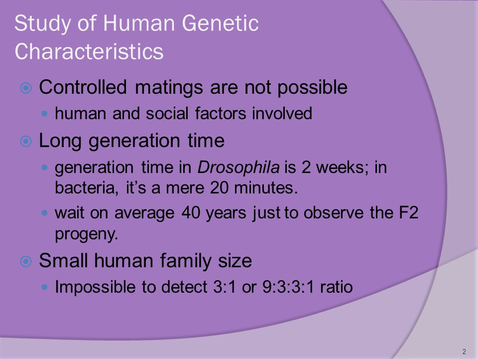 Study of Human Genetic Characteristics  Controlled matings are not possible human and social factors involved  Long generation time generation time