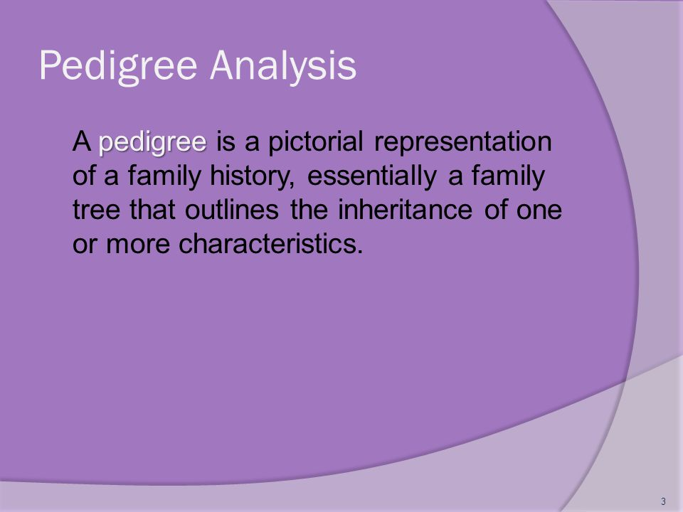 Pedigree Analysis pedigree A pedigree is a pictorial representation of a family history, essentially a family tree that outlines the inheritance of on