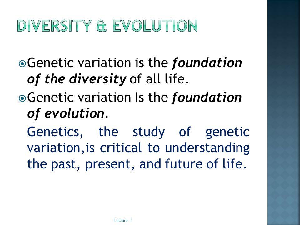 The three major divisions of genetics are transmission genetics, molecular genetics, and population genetics.