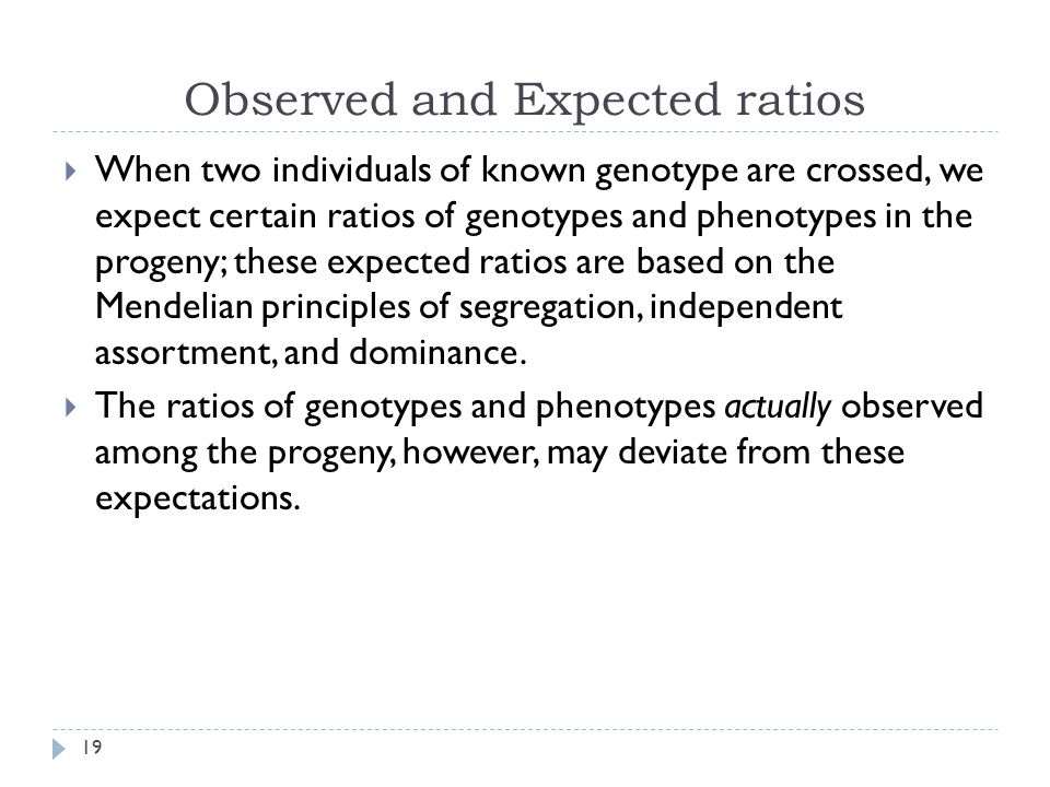 Observed and Expected ratios  When two individuals of known genotype are crossed, we expect certain ratios of genotypes and phenotypes in the progeny