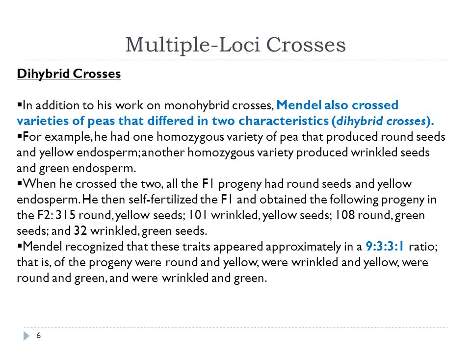 Trihybrid crosses Crosses including three characters:  In one trihybrid cross, Mendel crossed a pure-breeding variety that possessed round seeds, yellow endosperm, and gray seed coats with another pure-breeding variety that possessed wrinkled seeds, green endosperm, and white seed coats.