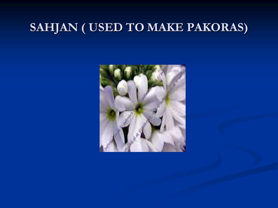 SAHJAN ( USED TO MAKE PAKORAS)