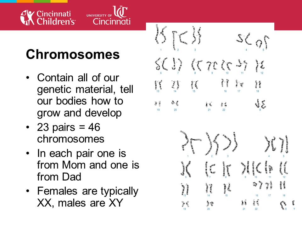 Chromosomes Contain all of our genetic material, tell our bodies how to grow and develop 23 pairs = 46 chromosomes In each pair one is from Mom and one is from Dad Females are typically XX, males are XY