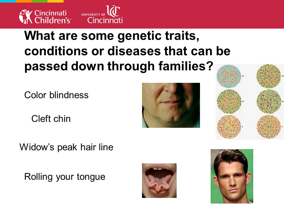 What are some genetic traits, conditions or diseases that can be passed down through families.