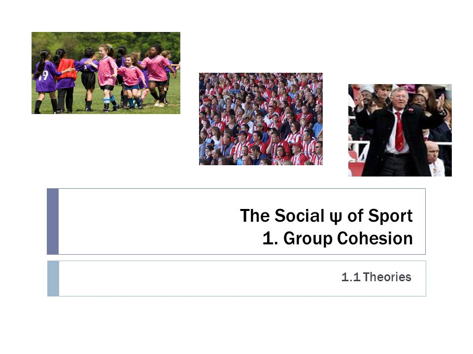 The Social ψ of Sport 1. Group Cohesion 1.1 Theories