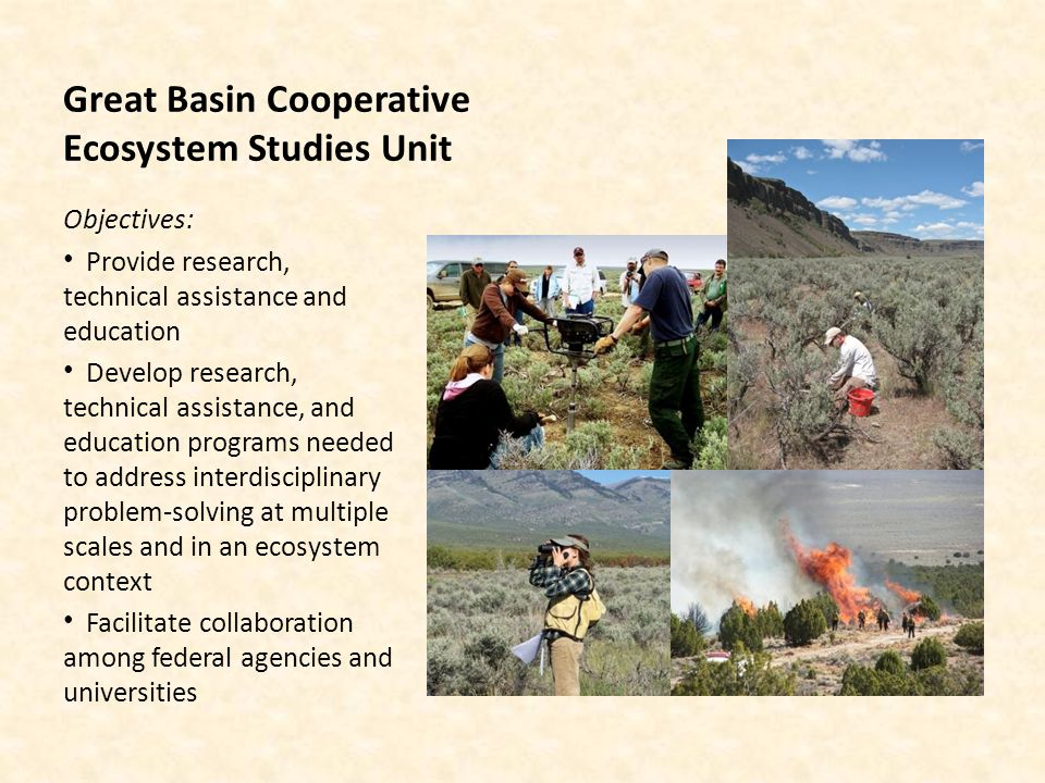 Great Basin Cooperative Ecosystem Studies Unit Established in 2000 Cooperative Agreement renewed (2011-2016) 15 university/ngo partners 8 federal partners Strategic Research Objectives: Fire ecology and post fire rehab Inventory ecosystem conditions Assess impacts of invasive plants Understand causes of decline in populations of threatened species Protect and preserve human and cultural resources Promote effective use of water, soil and related resources